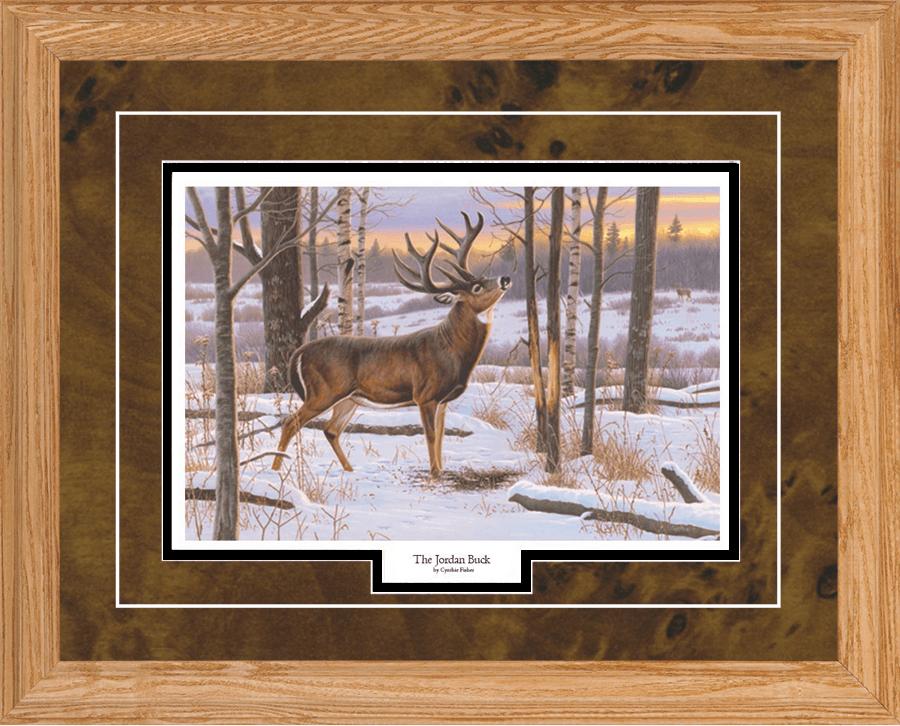 Cynthie Fisher The Jordan Buck Deer Art Pint-Framed 21 x 17